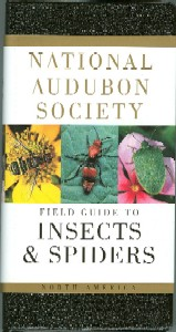 Field Guide to North American Insects and Spiders