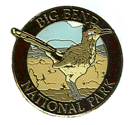 Big Bend Roadrunner Pin