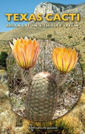 Texas Cacti: A Field Guide (Loflin)